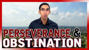 Business en ligne : la différence entre persévérance et obstination